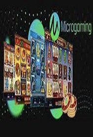 Top 5 Casino Software Developers